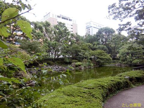 唐桃軒(とうとうけん) ねぎチャーシュー麺 横浜公園でGO