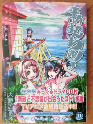特装版 あまんちゅ! (11)