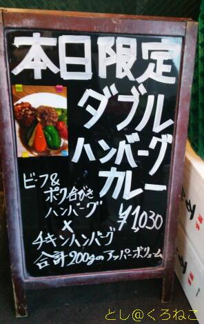スープカレー カムイ Wハンバーグカレー 3辛