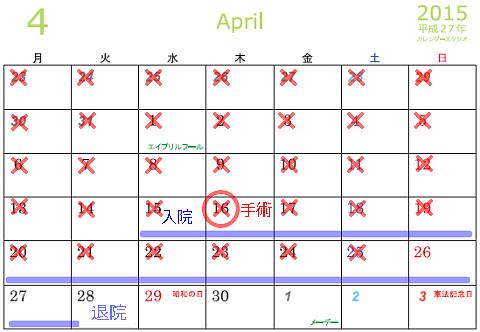 入院カレンダー