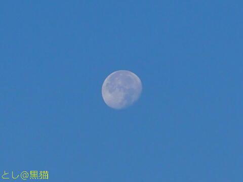 十七夜の月<